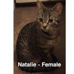 Image of Natalie