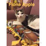 Image of Fiona Apple
