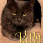 Image of Kelly